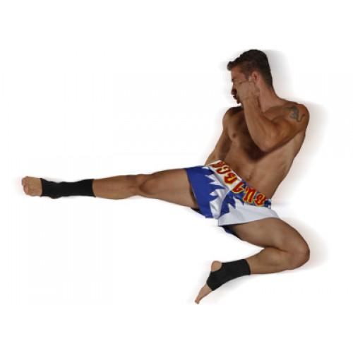 Kickboxing / Muyathai