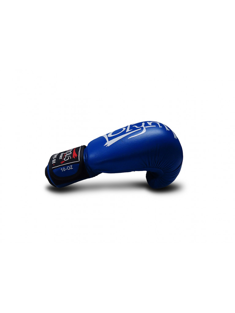 Boxing Gloves Olympus - Fighting III Leather
