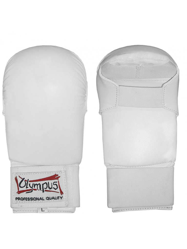 Karate Gloves Olympus