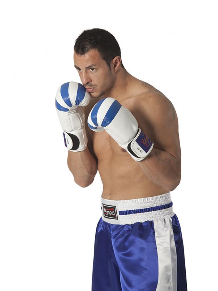 Boxing Gloves Olympus - 10oz Greek Flag