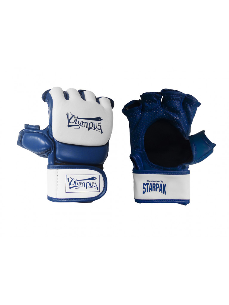MMA Gloves Olympus AERO-TEC Training