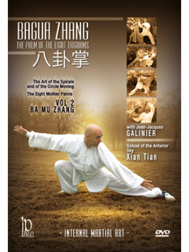 DVD.160 - Bagua Zhang-Vol 2