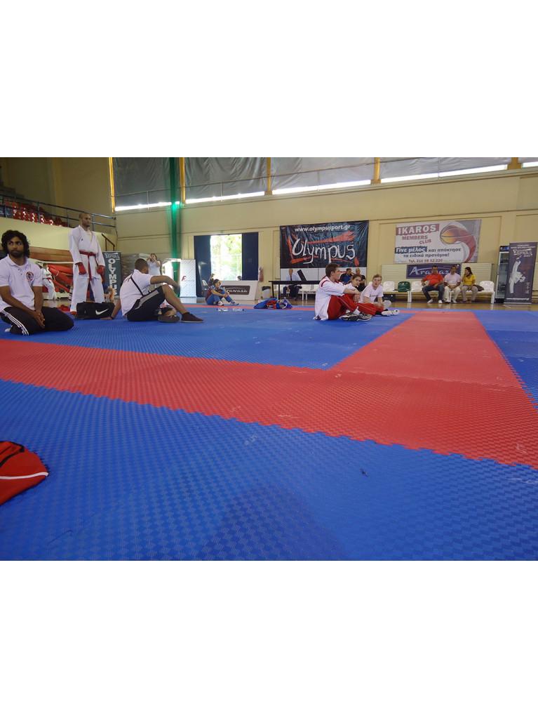 Sports Floor Mat Tatami WTF Style EVA Foam 100x100x2.5cm